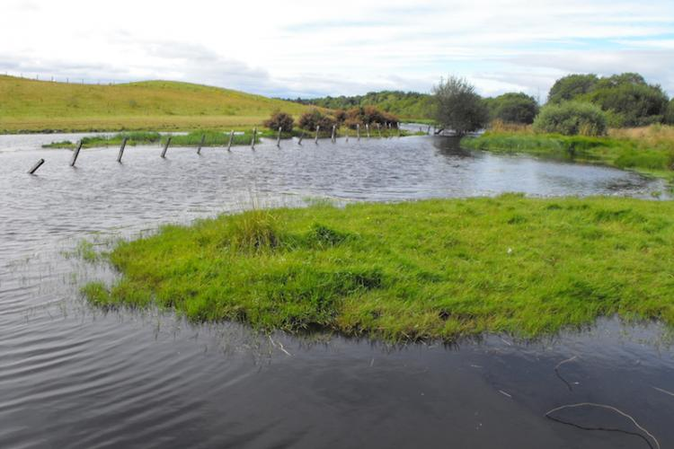 Hafren Water: Flood Risk management